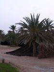 2003-05-Tunisie-0218.jpg